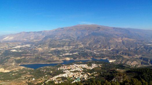 Pinos del Valle