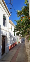 street in Pinos foto 2